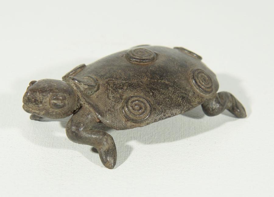 art africain tortue